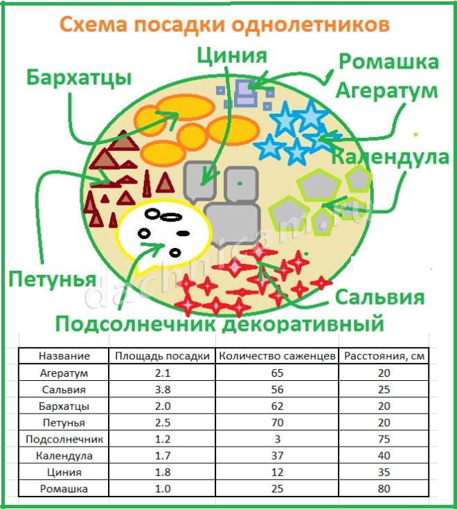 Как рассчитать количество необходимого материала для посадки цветов на клумбе?